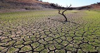 ¿Soluciones para la sequía?