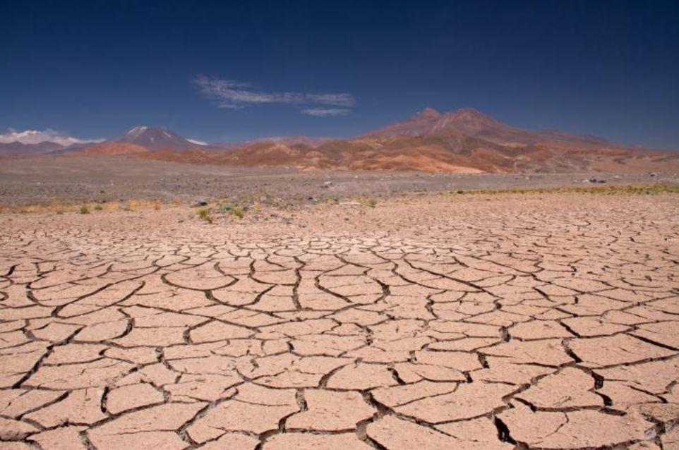 17 de junio: Día Mundial de Lucha contra la Desertificación