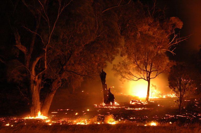 Australian bushfires.