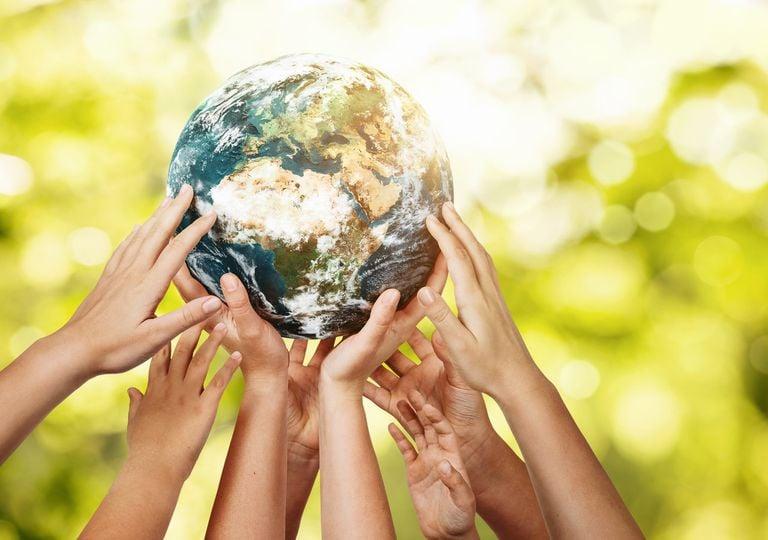 2020 bonnes nouvelles planète