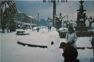 Olas de frío y temporales de nieve en Cantabria en los últimos cien años. Parte VIII y final
