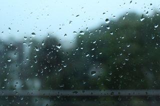 ¿Cuánta lluvia ha caído desde el 1 de enero?