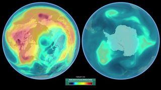Un año de ozono polar
