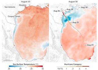¿Por qué se intensificó el huracán Harvey?