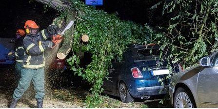 Entre 4 y 5 muertos ha dejado el paso de Herwart en Alemania, Polonia y la República Checa. Los daños son cuantiosos y el transporte en general se ha visto muy afectado.