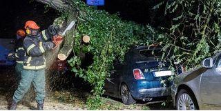 La intensa borrasca Herwart deja muertes y daños en Centro Europa