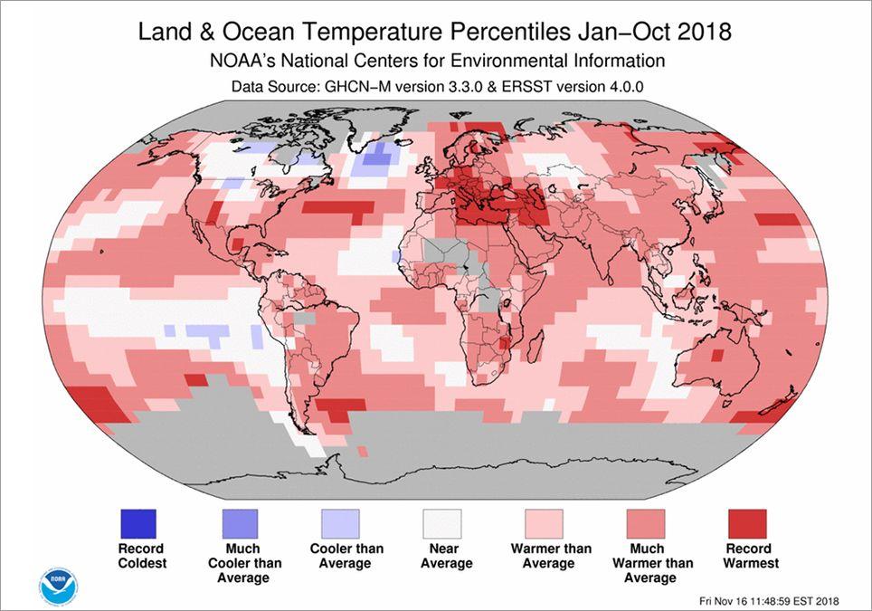 2018 cálido