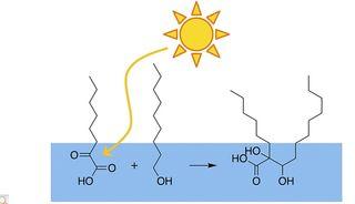 La luz y las grandes moléculas