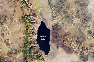 El lago Walker está desapareciendo