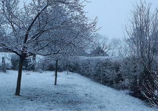 À 4 jours du printemps, la neige s'est (enfin) invitée en plaine