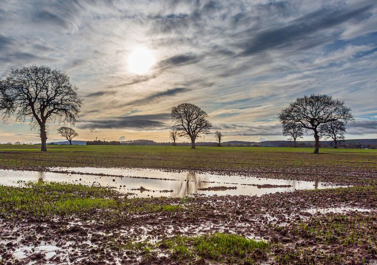 A mild week with sunny spells but there will be outbreaks of rain which will be heavy at times.