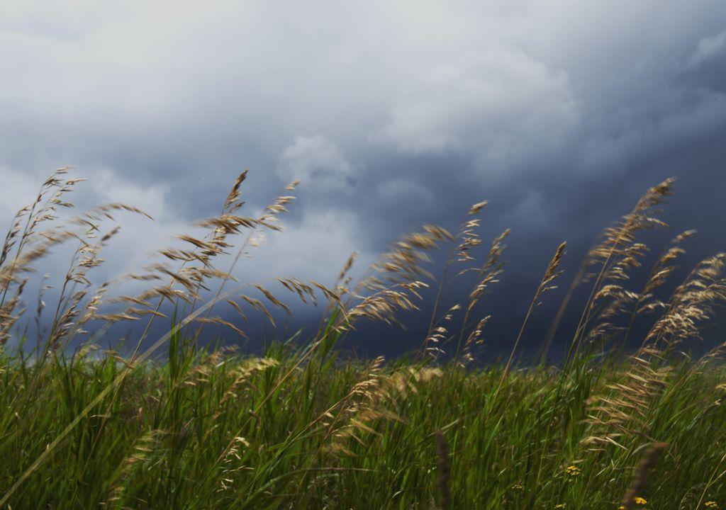 chuva; aguaceiros; trovoada; vento;