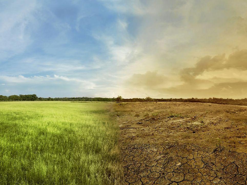 La semana pasada hubo una reunión en Naciones Unidas para definir acciones ante el cambio climático. Fotografía: Europart