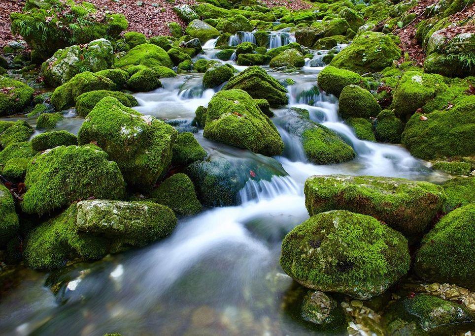 torrente-acqua-ruscello