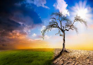 Adaptação e resiliência à Mudança Climática