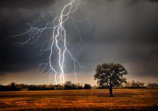 Alerta meteorológico: regresan las lluvias y tormentas