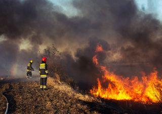 Alerta Roja en Valparaíso por complejidad de incendios forestales