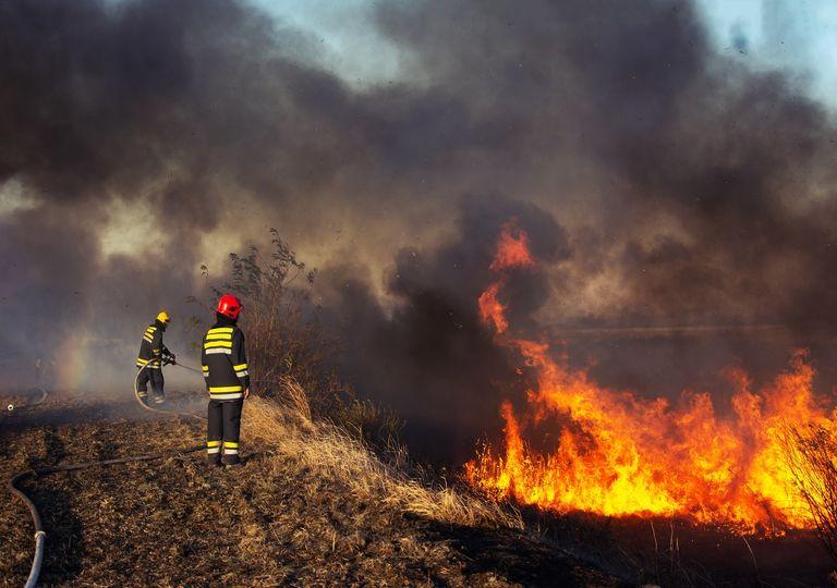 Bomberos combatiendo incendio forestal