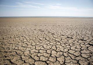 Alterações climáticas: as secas estão a ameaçar as zonas húmidas