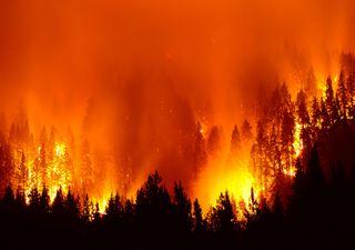 Alterações climáticas e os incêndios florestais