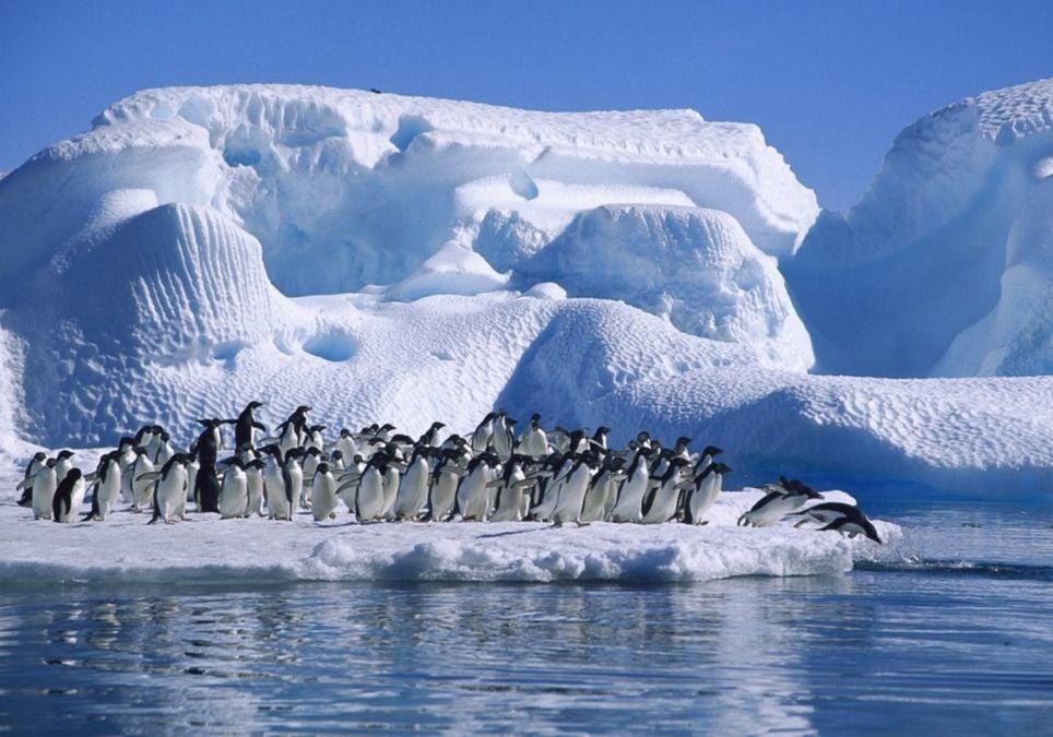 Antártida dehielo 6 veces 40 años cambio climático