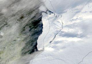 Antártida: témpano de 1200 kilómetros cuadrados sale a la deriva