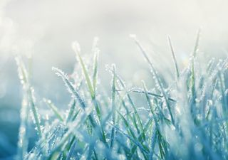 April 2021 broke records for frosts and sunshine