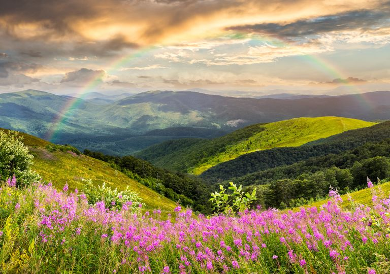 Spring rainbow