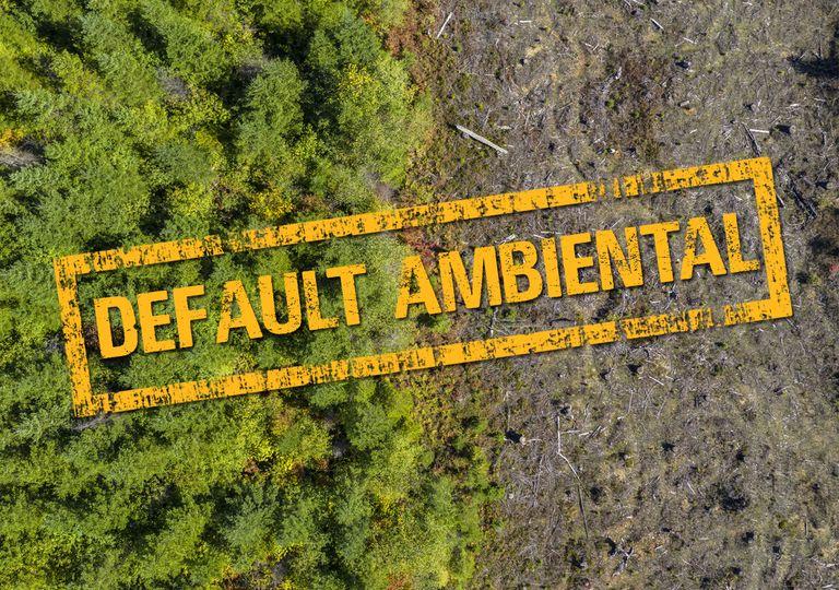 Default ambiental en Argentina