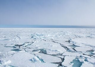 Inteligencia artificial ayuda a predecir pérdida de hielo ártico