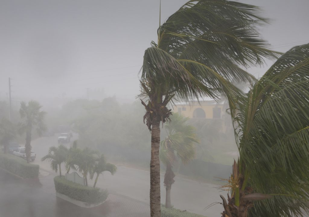 Vento forte; furacão