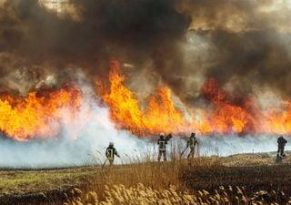 Austrália em chamas
