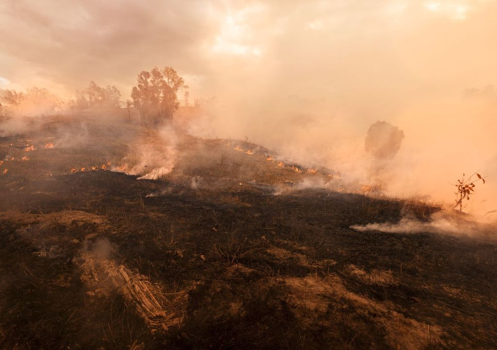 Australia's fires are expected to add to atmospheric CO2