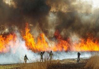 Avance del gran incendio en Valparaíso: consumidas ya más 4.000 ha
