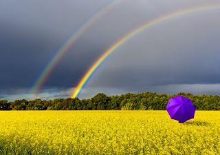Primavera 2020: o que esperar do início da estação das chuvas?