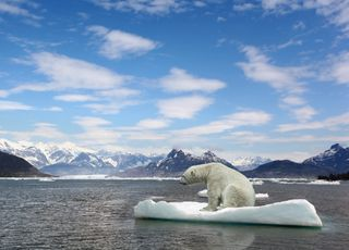 Will any ice remain in the Arctic by 2050?