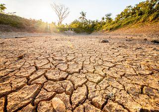 Bleibt es im August sehr warm? Der Trend für die zweite Monatshälfte!