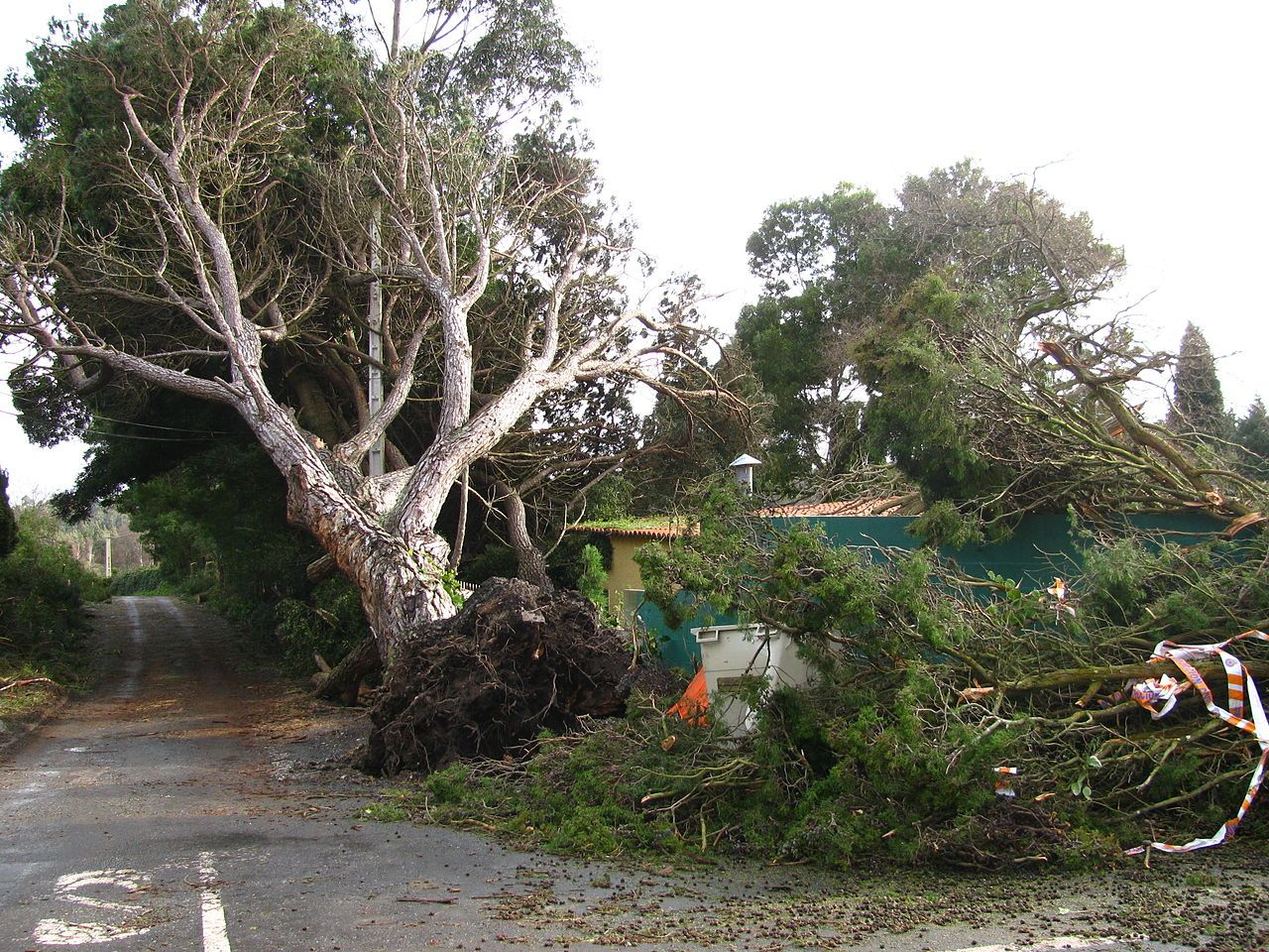 Borrascas (huracanadas) en Galicia de ayer y de hoy