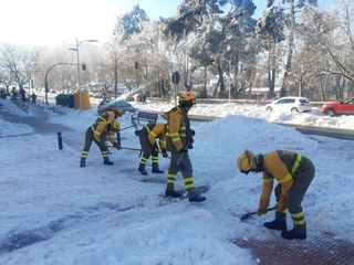 Brigadas de Refuerzo de Incendios Forestales para limpiar Madrid