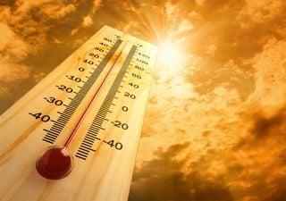 Juillet 2021 devient le mois le plus chaud jamais enregistré sur Terre