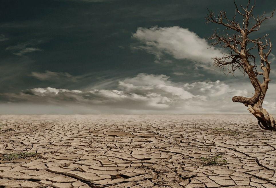 Risultati immagini per cambiamenti climatici