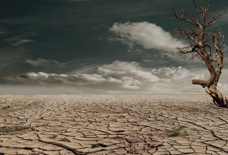 siccità-caldo