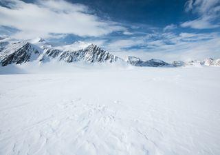 Cambiamenti climatici, la neve dell'Antartide diventa verde