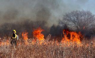 Cambio climático y los grandes incendios forestales