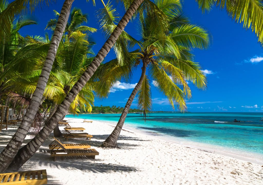 Tropical beach in the sunshine and heat.