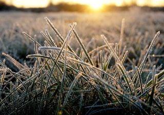 Carnaval: frio de inverno, geada e mínimas próximas a 0°C