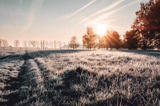 Chute des températures : est-ce le retour de l'hiver ?
