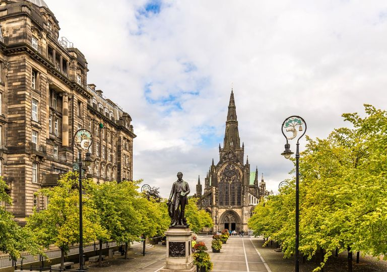 Trees in Glasgow remove 3% of particulate matter