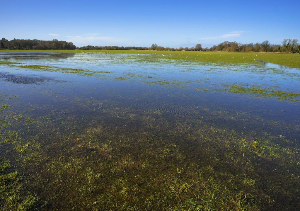 Amongst flooded fields in Cambridgeshire, a historic Civil War fort has been highlighted.