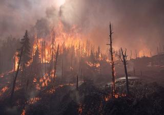 Clima extremo na Sibéria: dos incêndios ao degelo